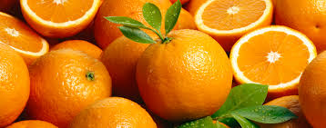 festa-da-laranja