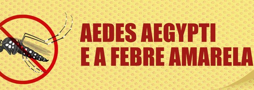 179_slider_aedes