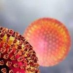Coronavírus: saiba sobre a doença e como se prevenir!