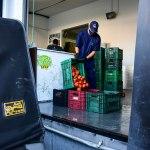 Desperdício de alimentos: uma reflexão