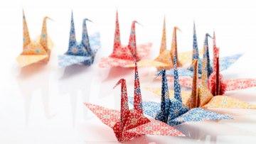 Origamis – 25/01/2021 – 15:30