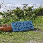Resíduos são retirados da costa paranaense durante ação em alusão ao Dia Mundial de Limpeza de Rios e Praias